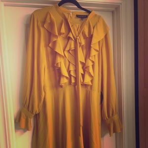 Long-sleeved , just below the knee yellow dress